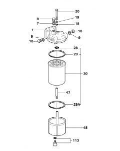 Delphi Fuel Filter Assembly 5861B045
